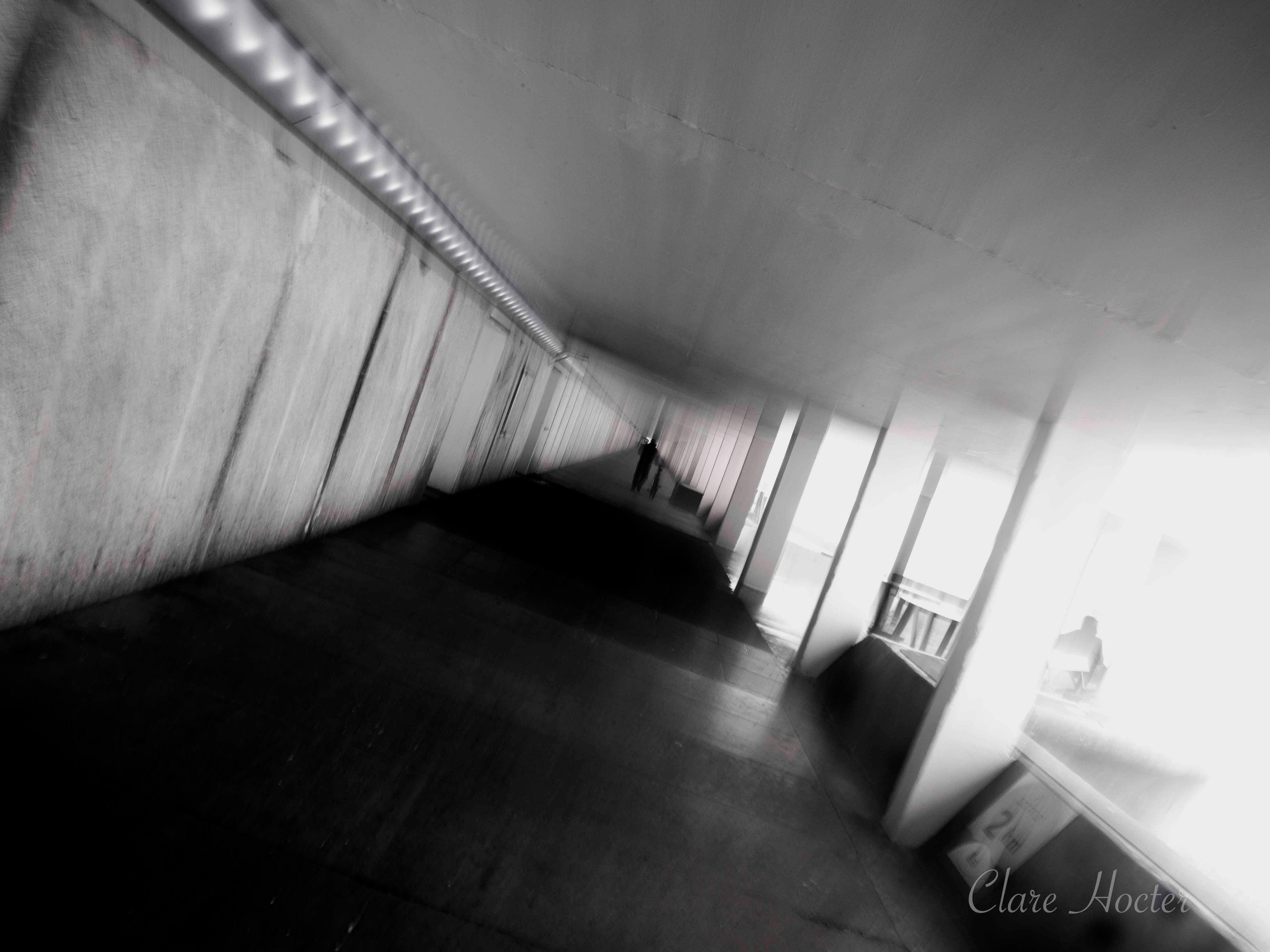bottle alley, st leonards, photo clare hocter