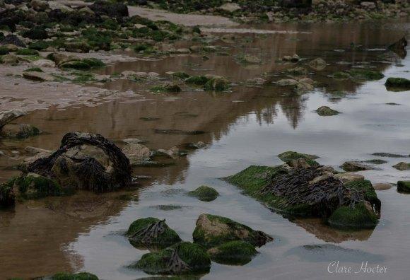 pett level beach, photograph, east sussex coast, clare hocter, photographer